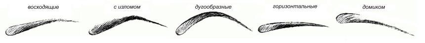 1835_brovi